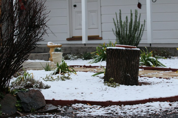 A light dusting of snow covers a small garden outside a room at Moore Park Inn Armidale