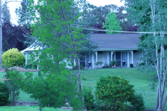 A beautiful shot of the scenery at Moore Park Inn Armidale with green trees and bushes.
